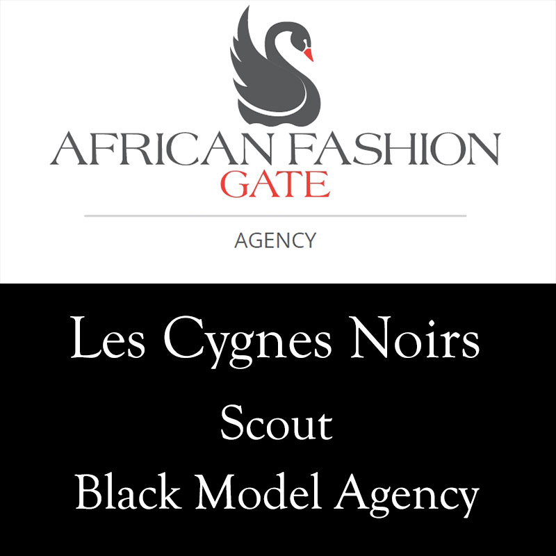 les_cygnes_noir